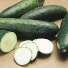 Straight 8 Cucumber (Bulk)- 200