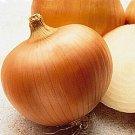 Yellow Sweet Spanish Onion Seeds- 400