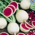 Watermelon Radish Seeds- 300