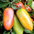San Marzano Tomato Seeds- 200