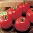 Money Maker Tomato Seeds- 200