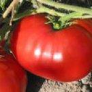 Delicious Tomato Seeds- 200