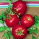 Ace 55 Tomato Seeds- 200