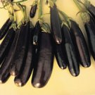 Little Fingers Eggplant Seeds- 200