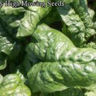 Giante D' Inverno Spinach Seeds- 200