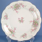Johann Haviland Bridal Rose (No Verge, All White) Dinner Plate