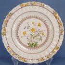 Spode Buttercup (Newer Backstamp) Dinner Plate