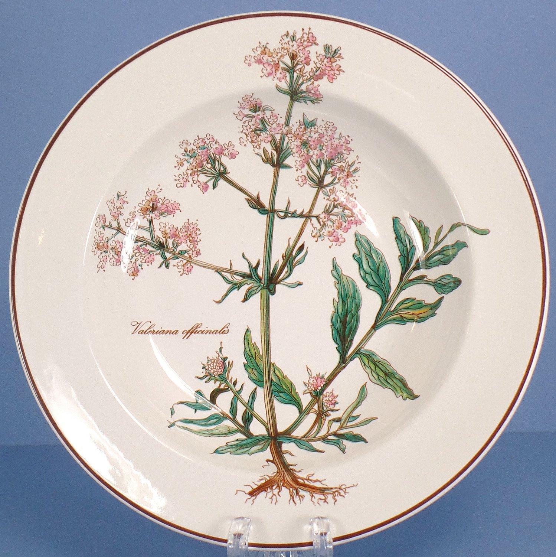 Villeroy & Boch Botanica Rim Soup Bowl - Valeriana Officinalis