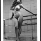 SHERISE SANTINIA TOTALLY NUDE NEW REPRINT  5 X 7    #1