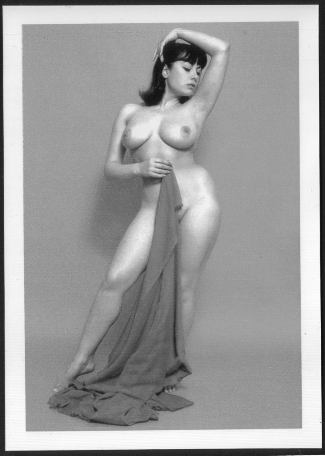 Excellent June palmer nude above told