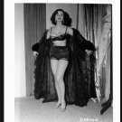 STRIPPER DORIAN DENNIS BUSTY BOSOMY POSE NEW REPRINT 5 X 7 #126