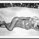 ACTRESS JAYNE MANSFIELD BOSOMY LEOPARD BIKINI POSE NEW REPRINT PHOTO 5X7 #43
