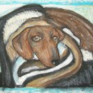 Chilly Doxie Dachshund Dog Art Print Giclee Collectible Signed Numbered