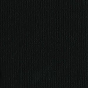 Bazzill Raven T10-1081