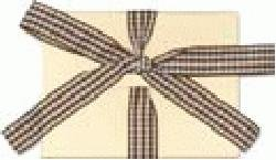 Junkitz Accordian Envelope book - cream
