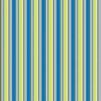 Junkitz R&B skinny stripe
