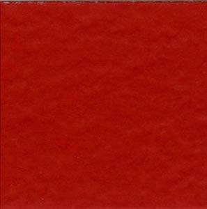Bazzill Prismatic Classic Red