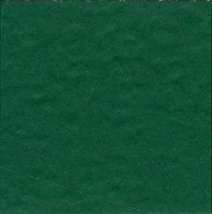 Bazzill Prismatic Classic green
