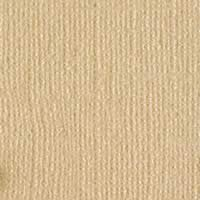 Bazzill Basics Bling Cardstock - Blank Check