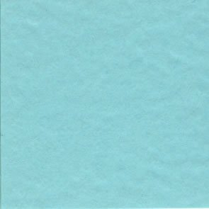 Bazzill Prismatic Frosted Teal T19.7558