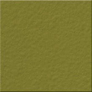 Bazzill Classics 12x12 Bazzill Celery - t5.540