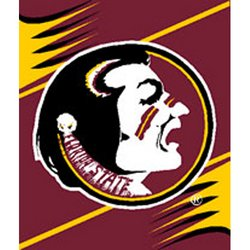 Florida State Seminoles Royal Plush Raschel NCAA Blanket by Northwest   MSRP $40.00