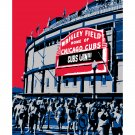 "16""x20"" - Wrigley Field in Chicago"