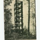 Living Tower, Camp Meeker, California Postcard