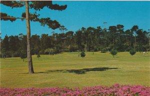 Peter Hay 9 Hole Par 3 Golf Course Pebble Beach PC