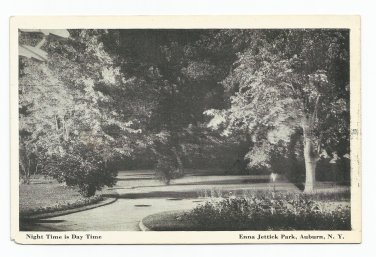 Enna Jettick Park Auburn New York Black & White Postcard