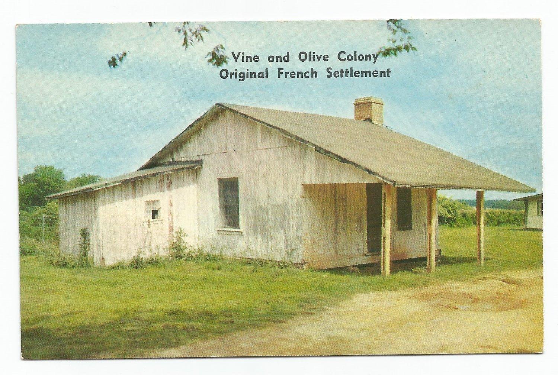 Vine and Olive Colony Demopolis Alabama Postcard