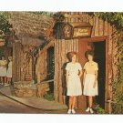 Pierre's Treasures Six Flags Over Texas French Section 1960s Postcard