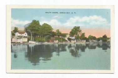 South Shore Sodus Bay New York Linen F.W. Peck Postcard