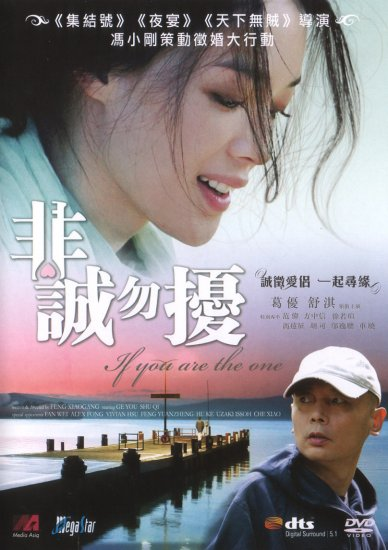 2009 NEW IF YOU ARE THE ONE DVD HK MOVIE ENG SUB