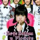 NEW 2009 BOYS BEFORE FLOWERS [10DISC] Korean Drama DVD