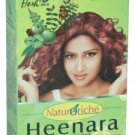Hesh Heenara Hair Pack Powder 100g | Henna Hair Color Blend