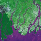 Ganges River Delta As Art on Canvas