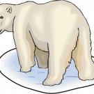 Polar Bear Realistic Wall Decal