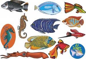 Fish Wall Decal Assortment Packs