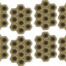 Tortoise Wall Decal Pattern Assortment Packs