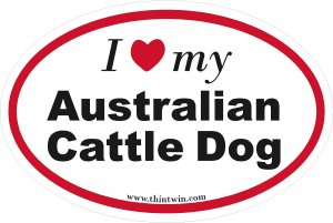 Australian Cattle Dog Oval Car Sticker