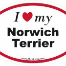 Norwich Terrier Oval Car Sticker