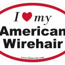 American Wirethair Oval Car Sticker