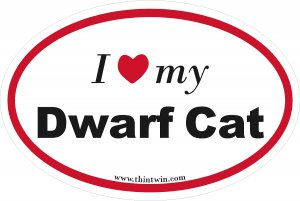 Dwarf Cat Oval Car Sticker