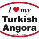 Turkish Angora Oval Car Sticker