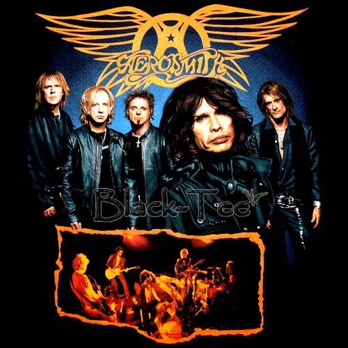 AEROSMITH BLACK ROCK TEE T SHIRT BAND Size L / E88