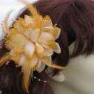 Amy Fascinator T10 Champagne
