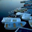 Docked Boats 2