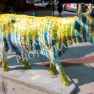 Cows On Parade - Cowlorado The Beautiful