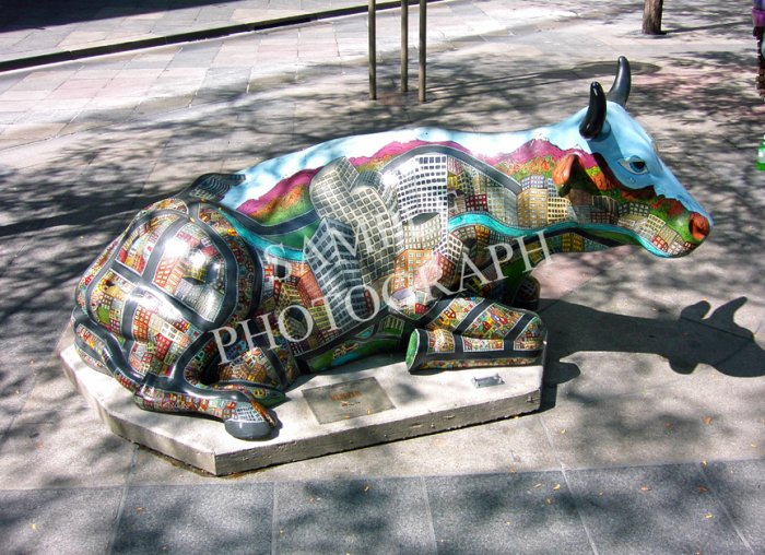Cows On Parade - Fifty Moo-Eighty